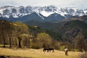 Serra del Cadí, La Cerdanya